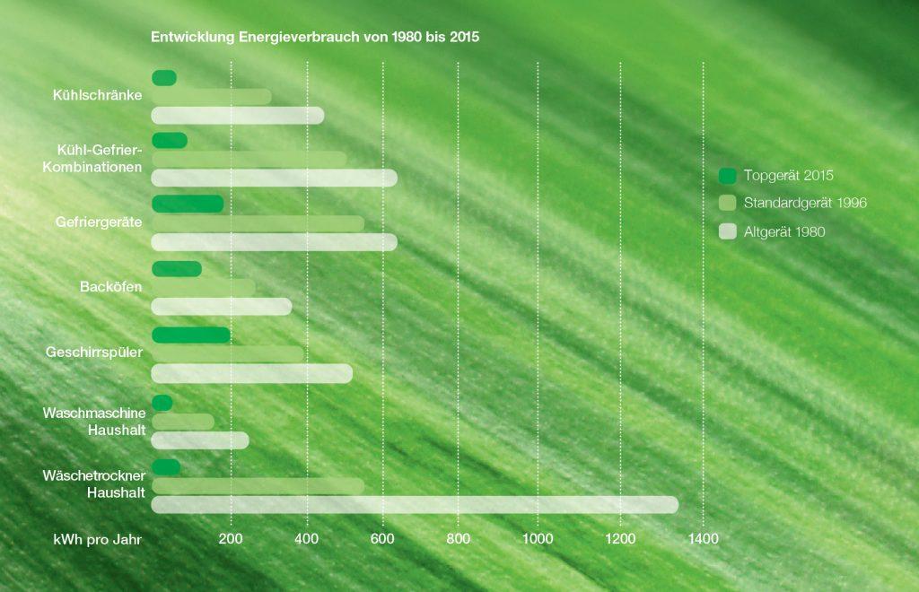 Energieverbrauch 1980 - 2015